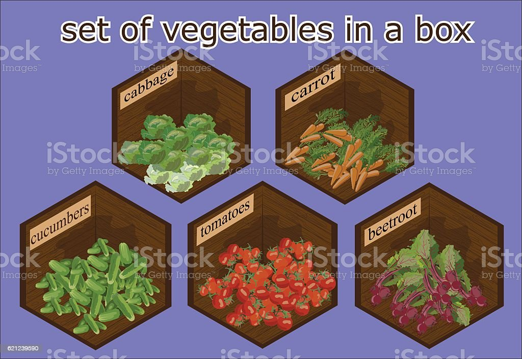 vegetables set in the context of a perspective wooden box
