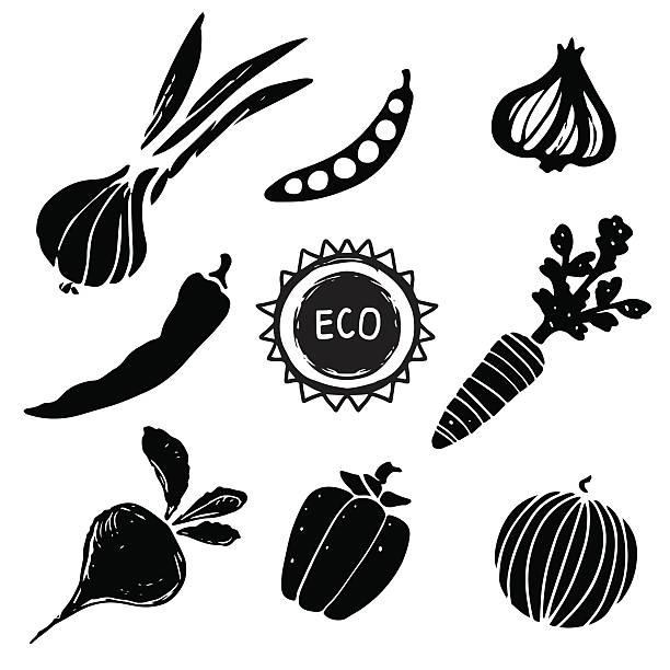 illustrazioni stock, clip art, cartoni animati e icone di tendenza di set di verdure - aglio cipolla isolated