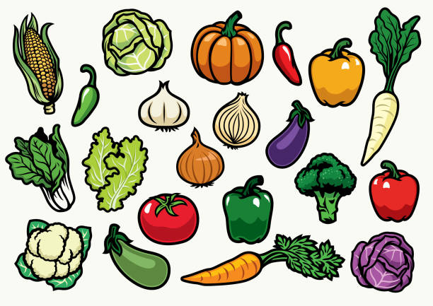 vegetables set - lettuce stock illustrations