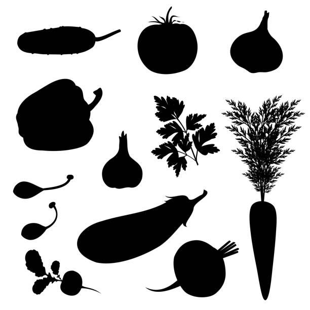illustrazioni stock, clip art, cartoni animati e icone di tendenza di vegetables silhouettes, set of vector illustrations. - aglio cipolla isolated
