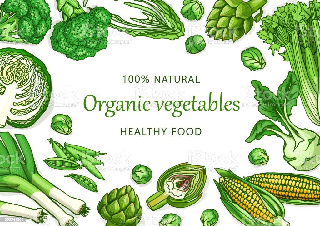 vegetables template on white background for design stock vector art