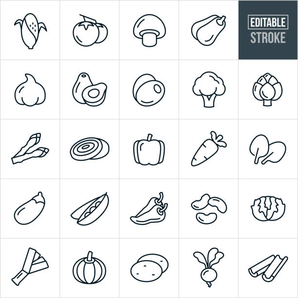 Vegetables Thin Line Icons - Editable Stroke A set of vegetable icons that include editable strokes or outlines using the EPS vector file. The icons include corn on the cob, tomatoes, mushroom, squash, garlic, avocado, olives, broccoli, artichoke, asparagus, onion, bell pepper, carrot, spinach, eggplant, peas, jalapeno peppers, beans, lettuce, leek, pumpkin, potatoes, radish, beat and celery. avocado stock illustrations
