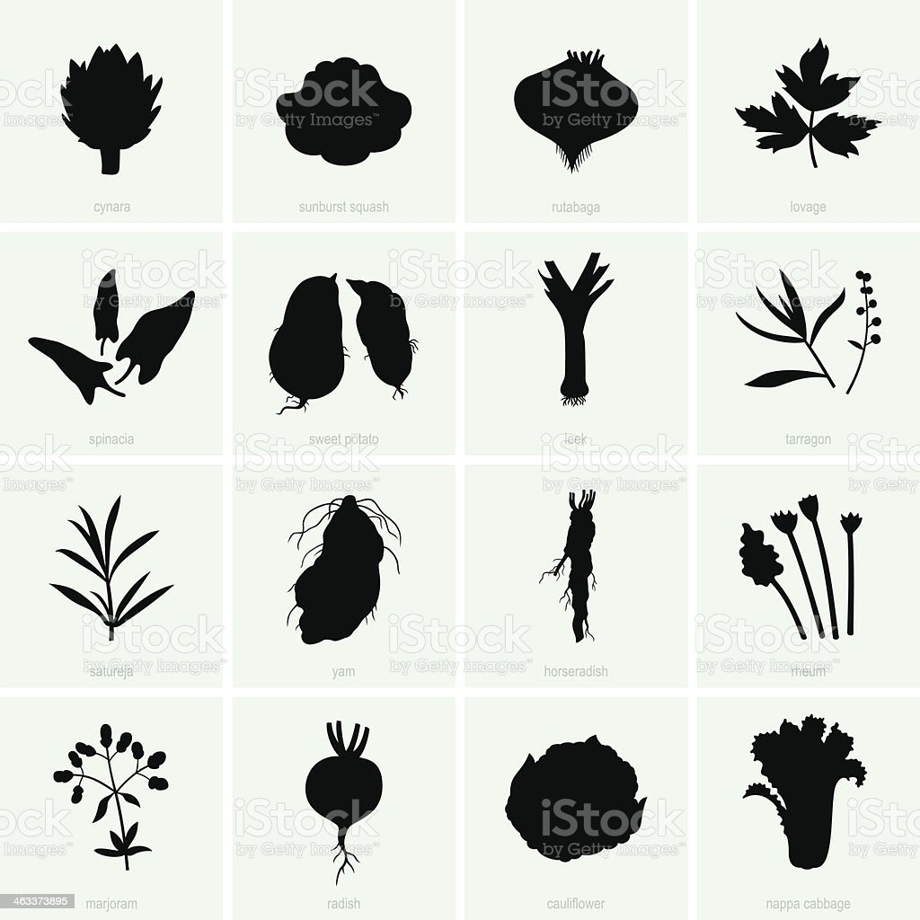 Vegetables (set 2) vector art illustration