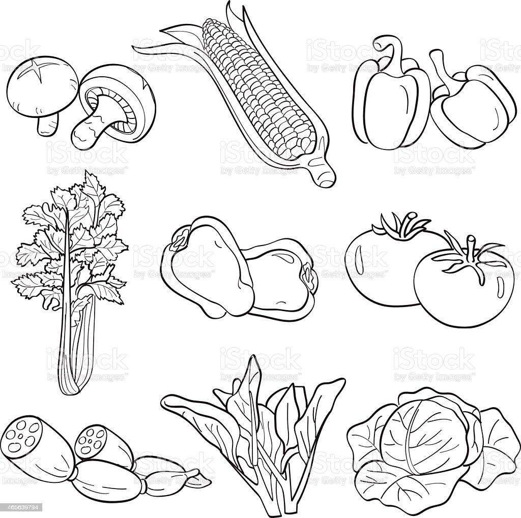 Vegetables vector art illustration