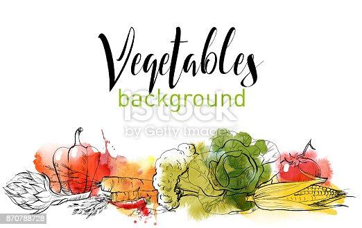 vegetables vector background