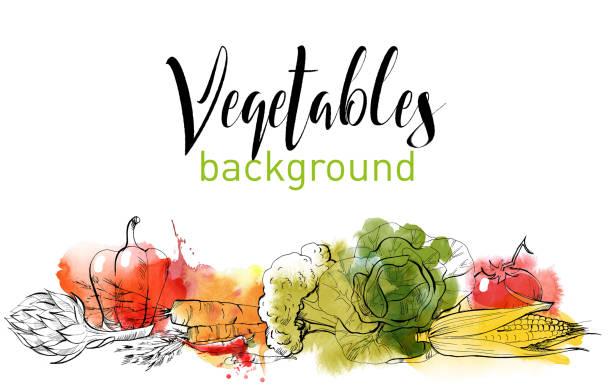 vegetables vegetables vector background cooking borders stock illustrations