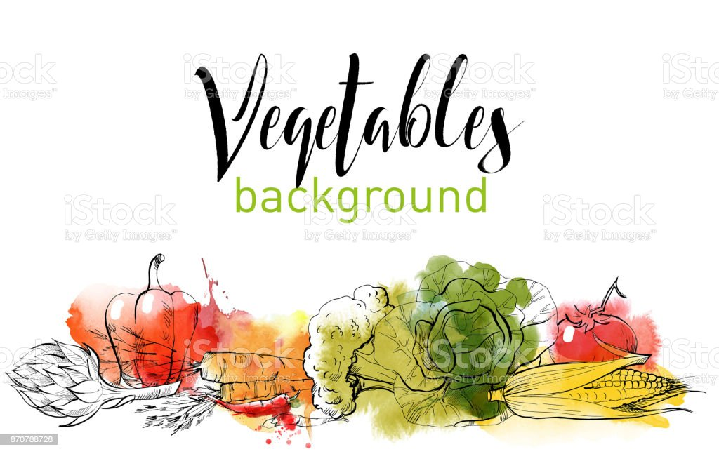 vegetables vector art illustration