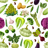 Vegetables pattern of zucchini squash and asparagus, beet and red cabbage, brussels sprouts and romanesco broccoli, potato, garlic and eggplant, mushroom champignon, bean or pea. Vector seamless background of fresh organic vegetarian veggies harvest