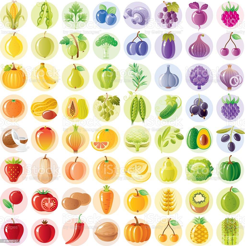 Vegetariano arco iris con frutas, vegetales, tuercas, bayas - ilustración de arte vectorial