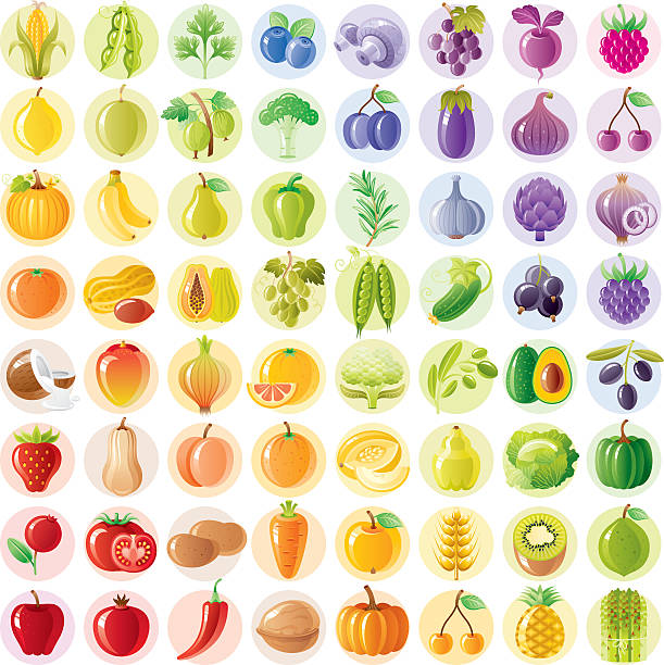vegetarian rainbow withe fruits, vegetables, nuts, berries - fruit stock illustrations, clip art, cartoons, & icons