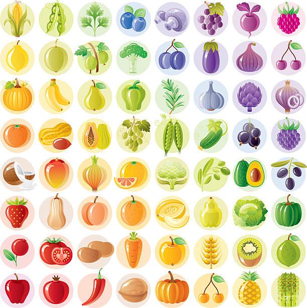 Vegetarian rainbow withe fruits, vegetables, nuts, berries vector art illustration