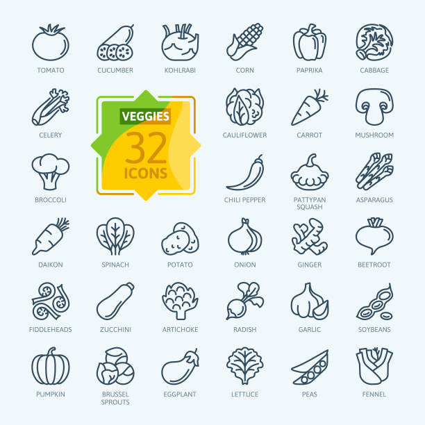 vegetarian, vegetable, veggies - minimal thin line web icon set. outline icons collection. - lettuce stock illustrations