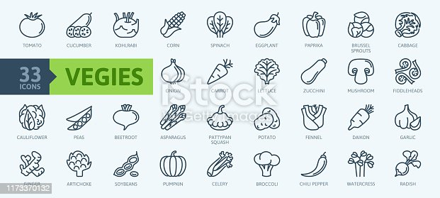 Vegetarian, vegetable, veggies - minimal thin line web icon set. Included the simple vector icons as tomato, cucumber, kohlrabi, cauliflower, pattypan squash, fiddleheads,daikon. Outline icons collection.