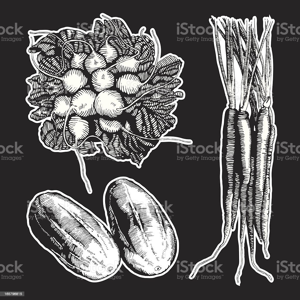 Veggies, Ink Drawing royalty-free veggies ink drawing stock vector art & more images of black and white