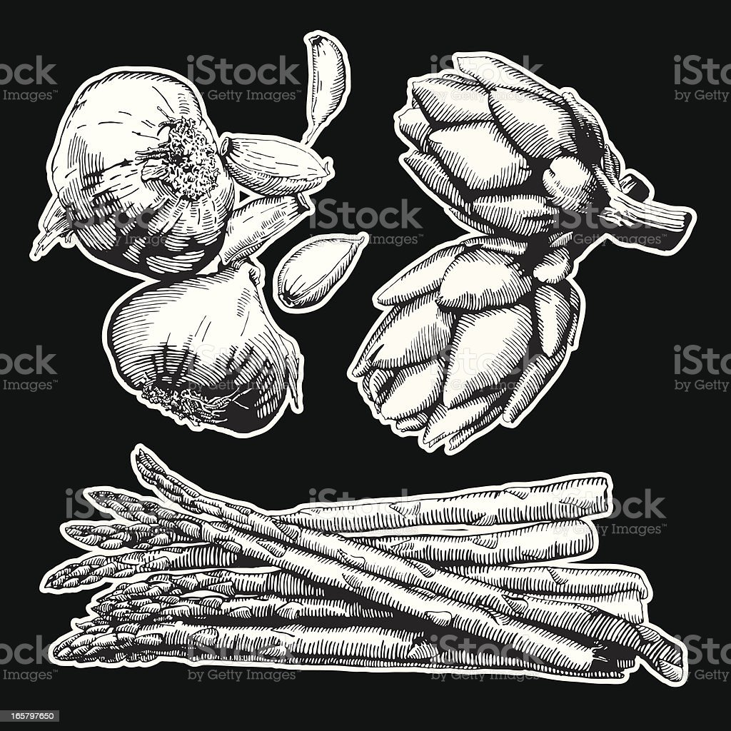 Vegies royalty-free vegies stock vector art & more images of artichoke