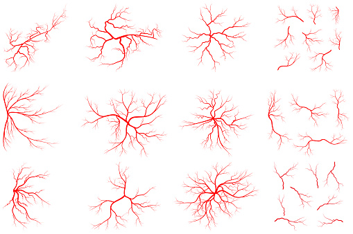 Vein set illustration isolated on white background. Collection of human blood system graphic. Red vessel, arteries design. Anatomical icon group. Vector shape of artery. Eps 10 abstract symbols.