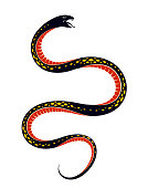 Venomous Snake Vintage Tattoo Vector Drawing Of Aggressive