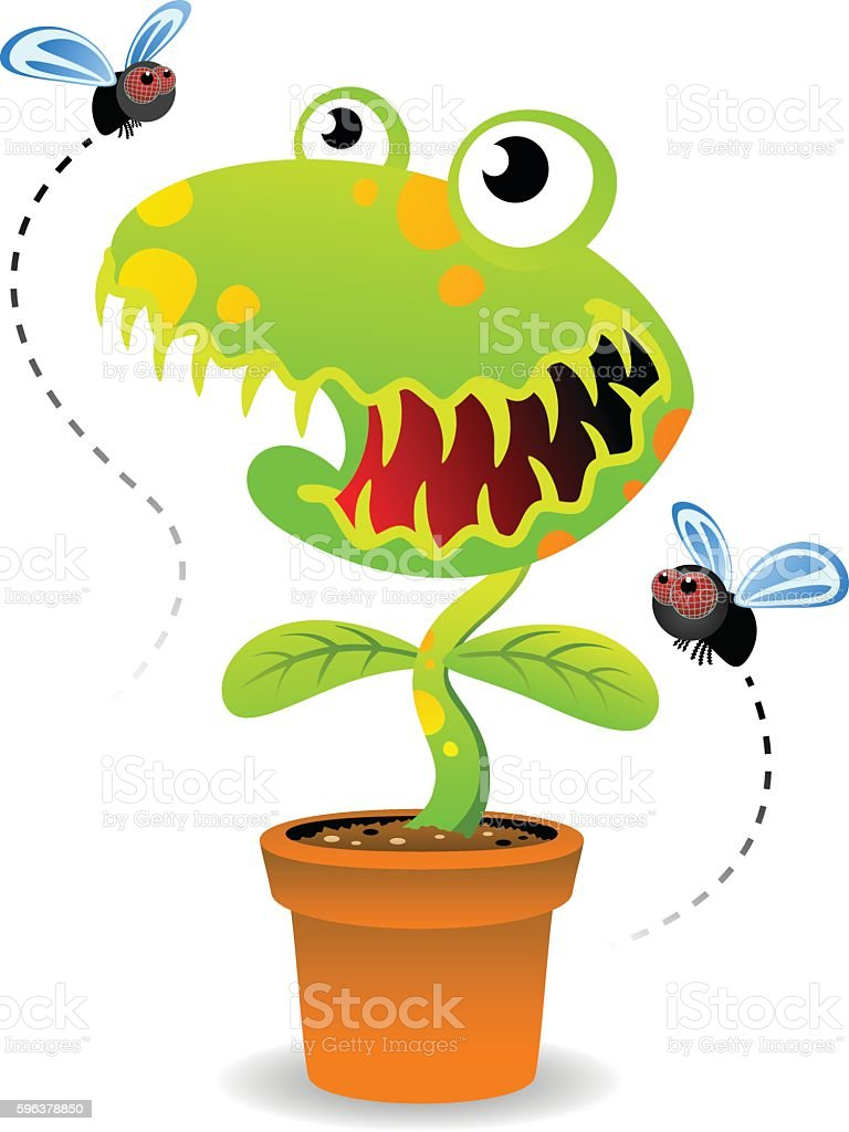 Venus Fly Trap vector art illustration