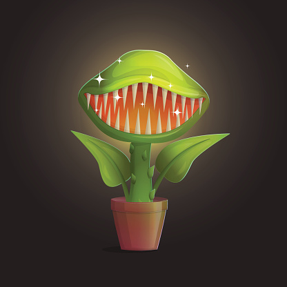 Venus Flytrap Flower Carnivorous Plant Illustration Stock