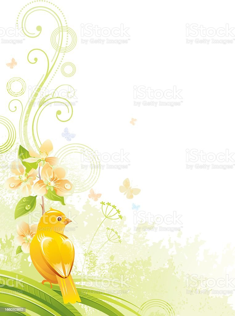 Vertical background with copyspace, fruit tree branch and canary bird royalty-free vertical background with copyspace fruit tree branch and canary bird stock vector art & more images of abstract