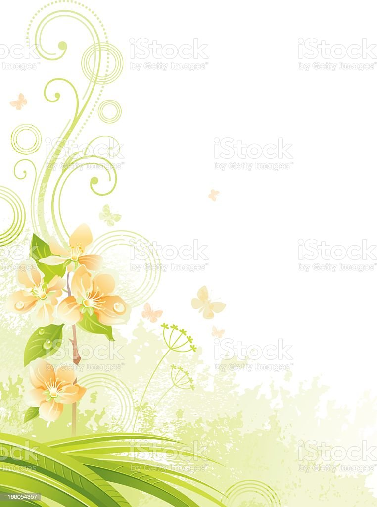 Vertical Background With Copyspace Fruit Tree Branch Stock
