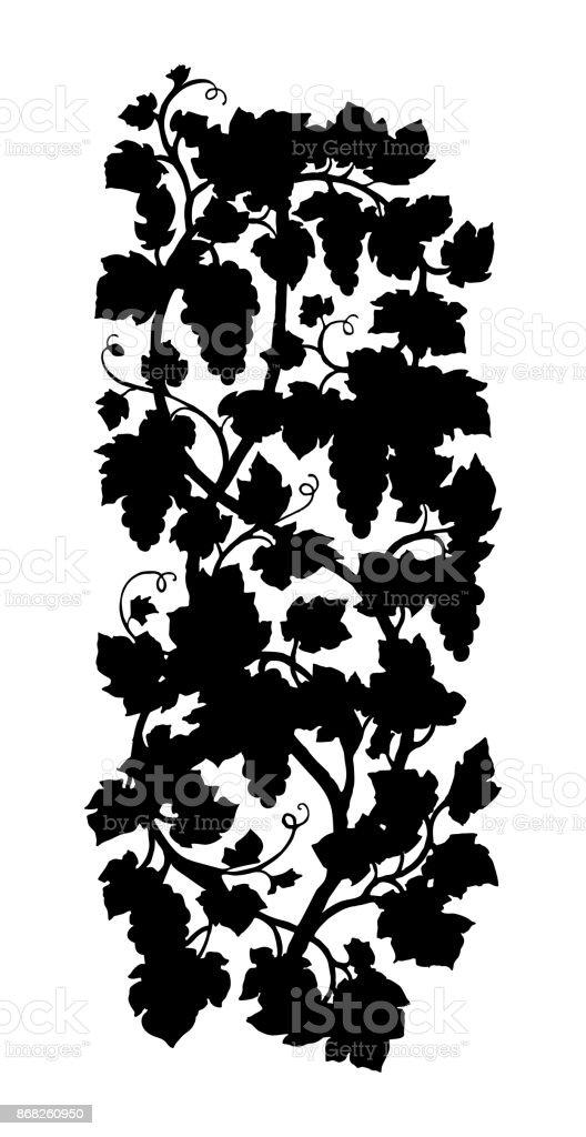 Vertical Grape Vine Silhouette Stock Vector Art & More Images of ...