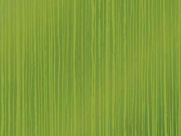 垂直ストライプの背景。緑茶のイメージ。抹茶。 ベクターアートイラスト