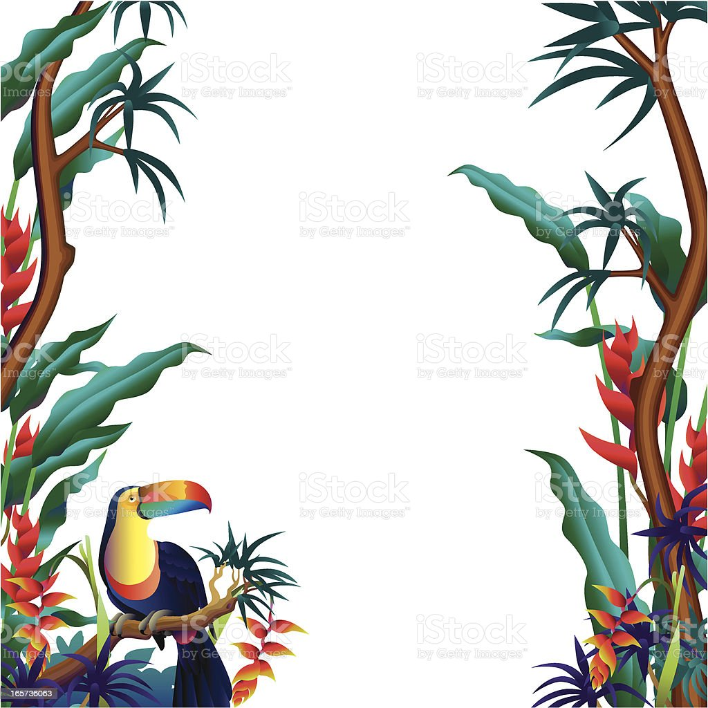 Vertical Tropical Borders Stock Vector Art 165736063 Istock