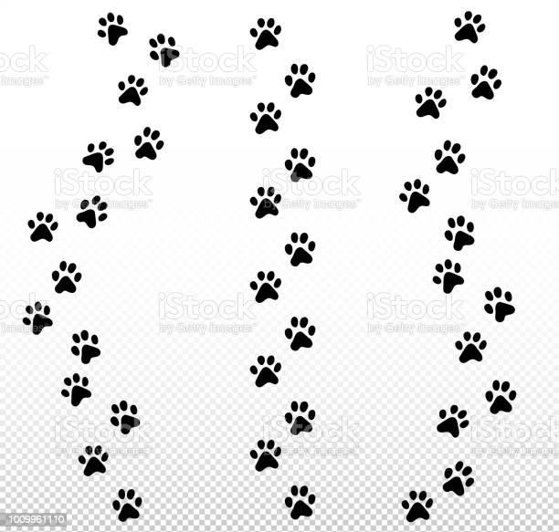 Vertical vector cat kitten set of foot trail track print vector id1009961110?b=1&k=6&m=1009961110&s=612x612&h=jmxeobrwcvr85xjiynqbmmgcog3zbqbwvcttm4uicfg=