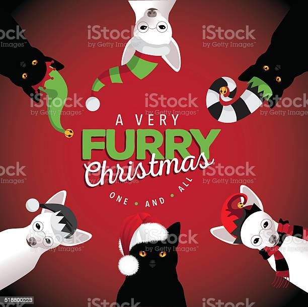 Very furry christmas dogs and cats vector id518800223?b=1&k=6&m=518800223&s=612x612&h=l3zxpupzp3ze 53qrc5wbq h5v1trsogmgq0v44ub18=