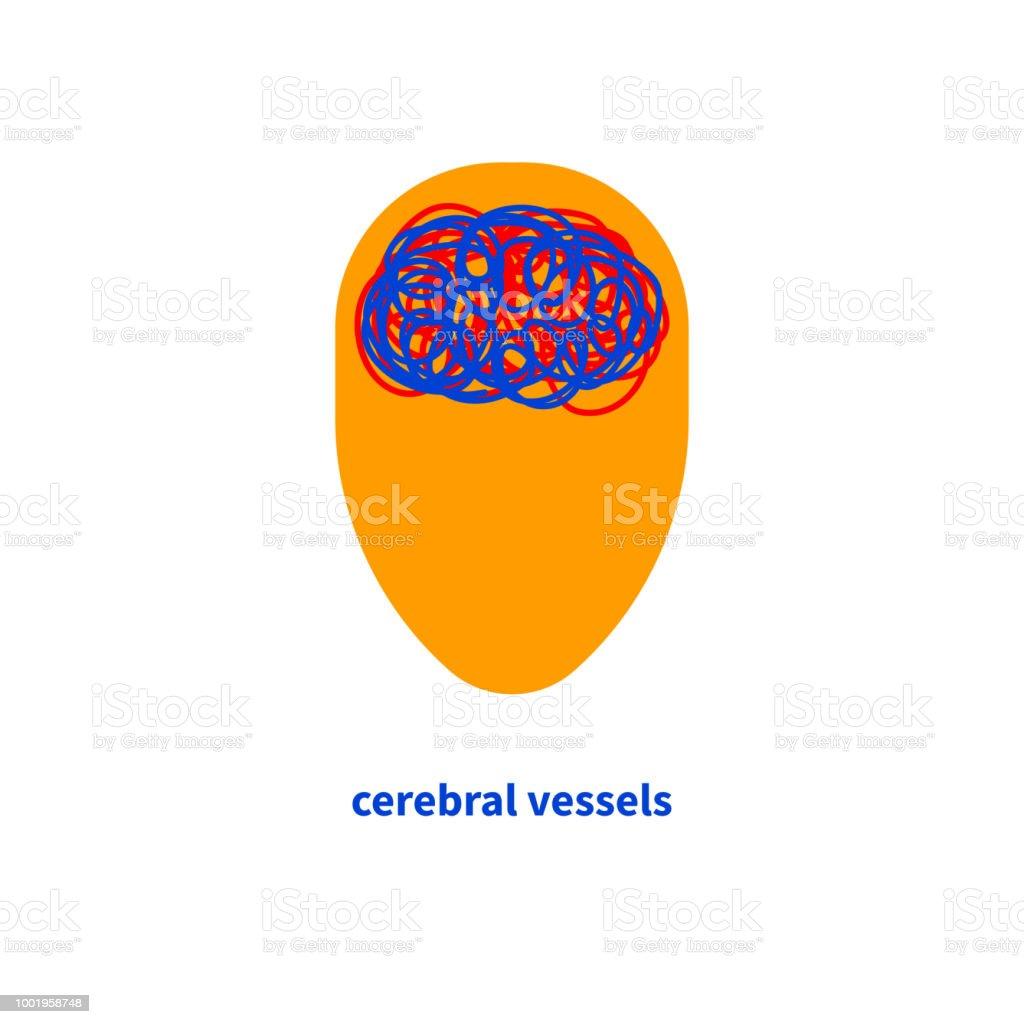 Ilustración de Vasos Del Cerebro y más banco de imágenes de ...
