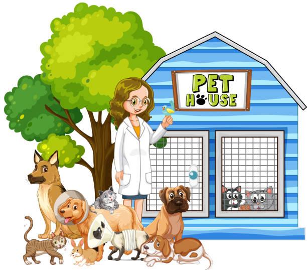 tierarzt und kranke tiere haustier haus - arbeitshunde stock-grafiken, -clipart, -cartoons und -symbole