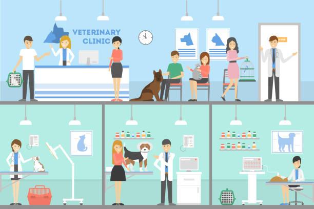 vet clinic set. - veterinarian stock illustrations, clip art, cartoons, & icons