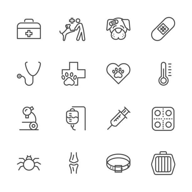 bildbanksillustrationer, clip art samt tecknat material och ikoner med veterinärklinik, enkel tunn linje veterinärmedicin ikoner anger. vector ikon design - djursjukhus