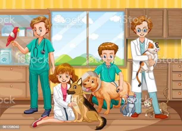 Vet doctor team at clinic vector id961208040?b=1&k=6&m=961208040&s=612x612&h=3emlnaj2b xzwo8drbyro1ubcsqp7hse o3rqhnony8=