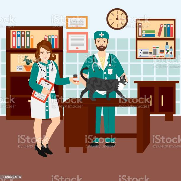 Veterinarian and nurse in the clinic with a cat vector id1130660916?b=1&k=6&m=1130660916&s=612x612&h=5zxjyttadz4glqjeoomvxj2nmfitvak54py4tej7jaw=