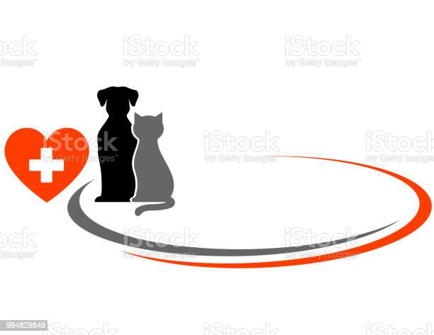 Veterinarian background with animals vector id994829848?b=1&k=6&m=994829848&s=612x612&h=ok7ww7p  6wwdwqtgk6p5ofy2wfwzz91kl0qqc23vym=