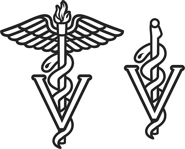 veterinarian caduceus - veterinarian stock illustrations, clip art, cartoons, & icons