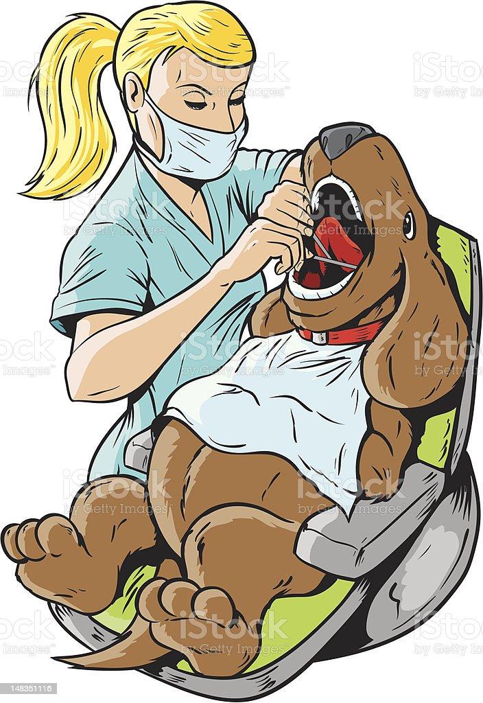 Veterinarian dentist royalty-free stock vector art