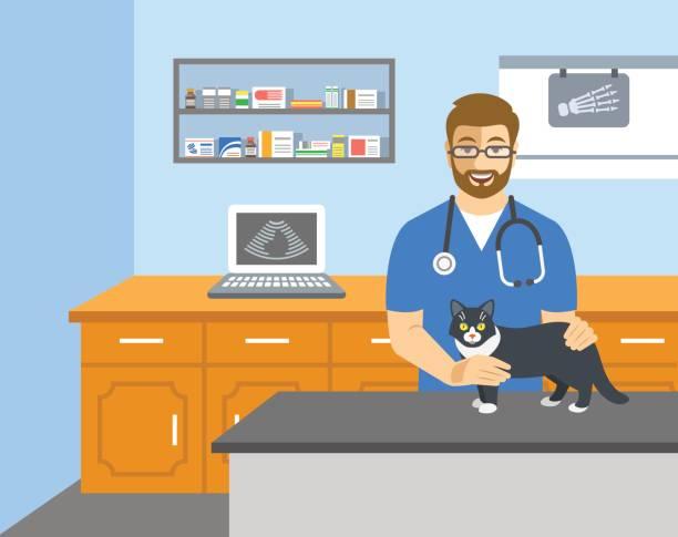 ilustrações, clipart, desenhos animados e ícones de médico veterinário detém gato na mesa de exame - consultório médico