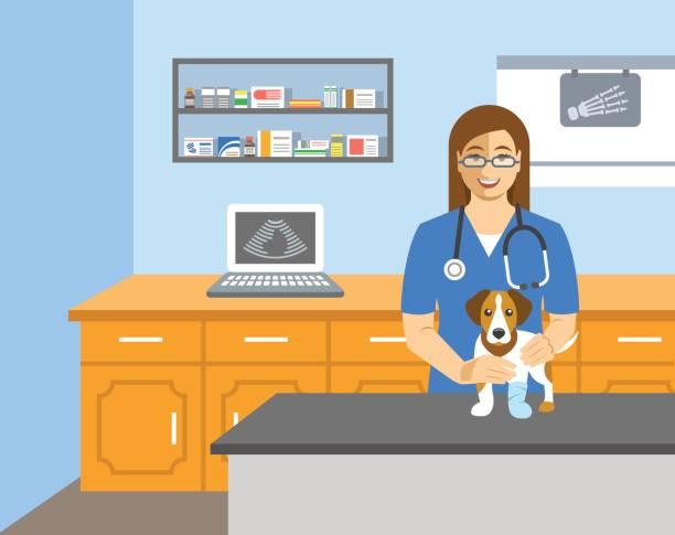 veterinarian doctor holds dog on examination table - veterinarian stock illustrations, clip art, cartoons, & icons