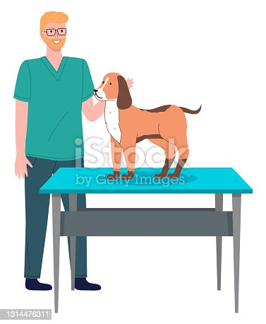 Veterinarian doctor treat dog in the hospital office. Man stroking a puppy standing on medical table