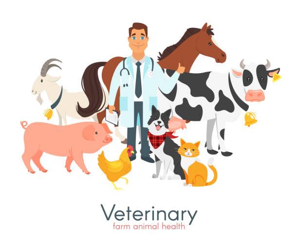 veterinarian doctor with farm animals - veterinarian stock illustrations, clip art, cartoons, & icons