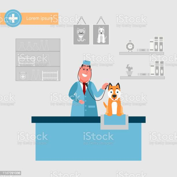 Veterinarian in the vet clinic with a cute dog pet treatment concept vector id1147291036?b=1&k=6&m=1147291036&s=612x612&h=hctufb6npdm9diicrwriwfom17lqcy27n7ycuiohtdk=