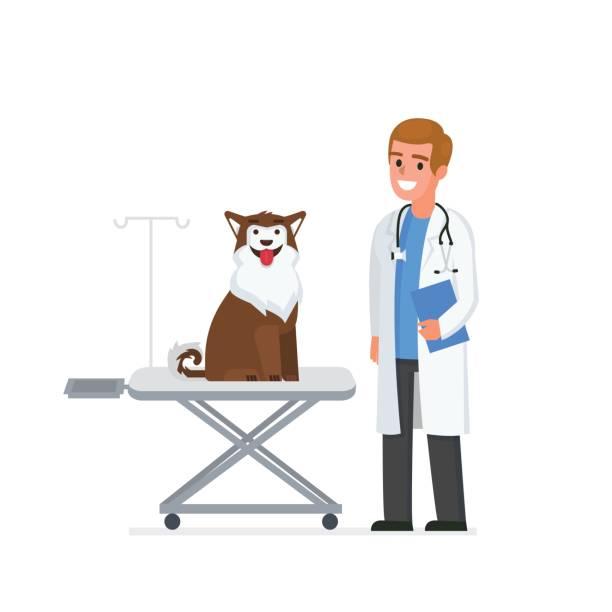 bildbanksillustrationer, clip art samt tecknat material och ikoner med veterinär - djursjukhus