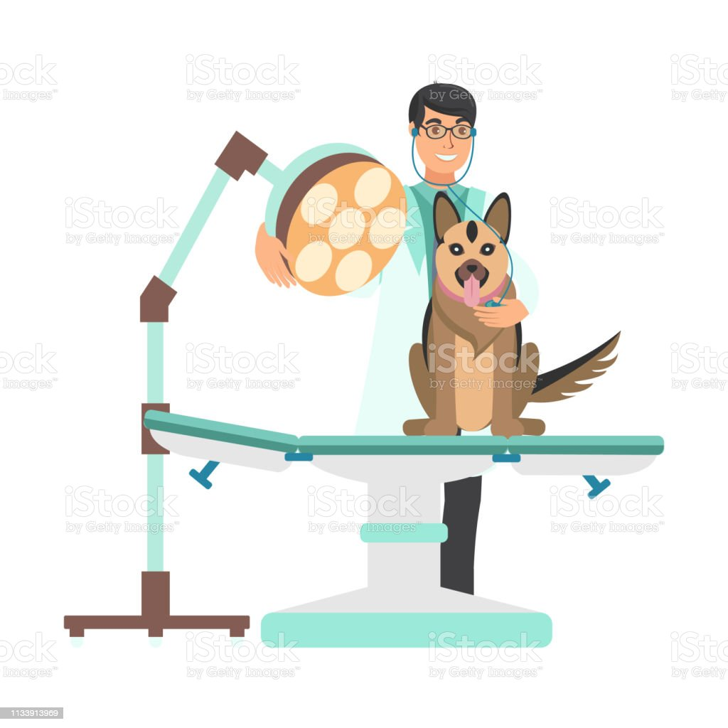 Veterinarian With Dog In Vet Clinic Illustration Stock