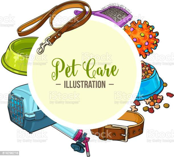 Veterinary banner of pet accessories with round place for text vector id816296216?b=1&k=6&m=816296216&s=612x612&h=jfisvdsuqyf4lmd1eosyy9sfag1gyq9jogvozuayhjo=