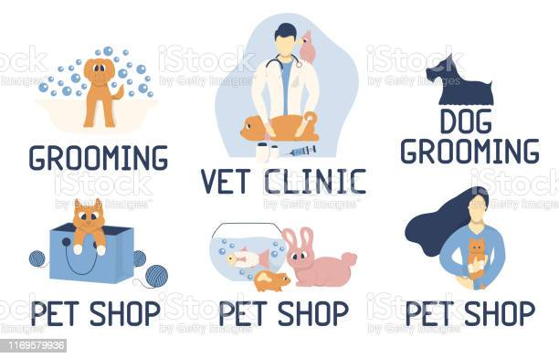 Veterinary clinic or hospital poster concept with male doctor a vector id1169579936?b=1&k=6&m=1169579936&s=612x612&h=7rcdl exoo8ru5jgnea0cgamhpq3ywzw opjghdz5eu=