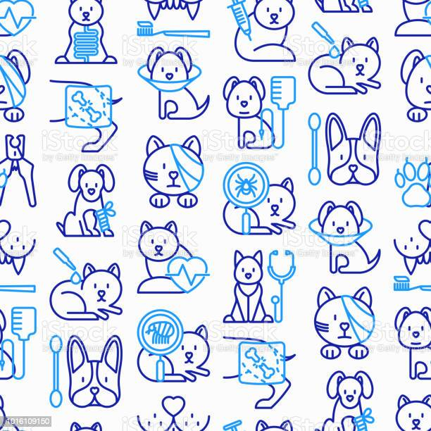 Veterinary clinic seamless pattern with thin line icons broken leg vector id1016109150?b=1&k=6&m=1016109150&s=612x612&h=gxiew4sykkpv2mnrhiq1nrpsswcchc4vnnozmvqmrs0=