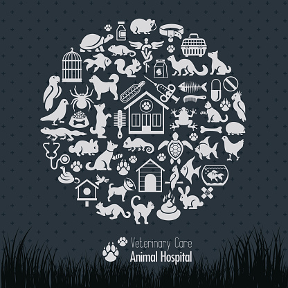 Veterinary Collage
